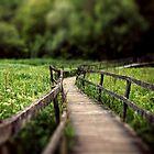 Walk With Me by fabiela