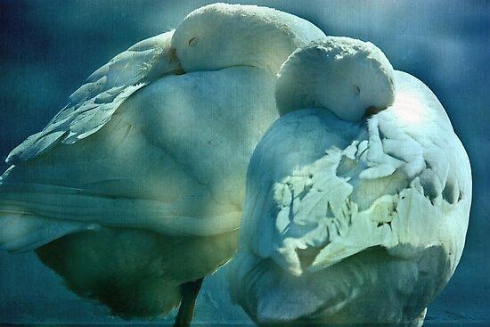 Dreaming in blue by inkedsandra