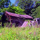 shootin' Bob's cabin by Sandra Hopko