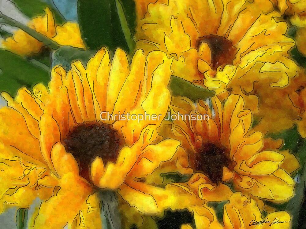 Yellow Chrysanthemums 2 by Christopher Johnson