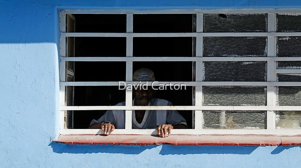 The prisoner? by David Carton