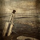 Message In A Bottle by Heather Haderly
