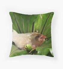 Bantam chook nesting in fern Throw Pillow