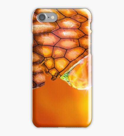 Elixir of the Sacral Chakra iPhone Case/Skin