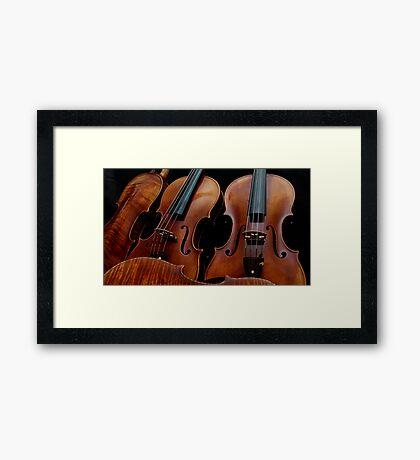 Modern Violin Collection - Stradivarius & friends Framed Print
