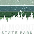 Roan Mountain State Park Tennessee Vintage by Skylar Harris