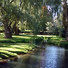 The Willows of Grand Pre by George Cousins