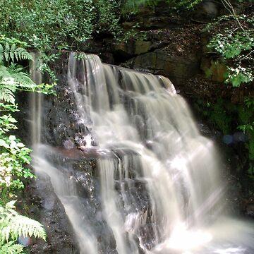 Douglas Falls by spottydog06