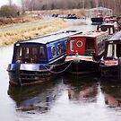 Berthed Barges by Lynne Morris