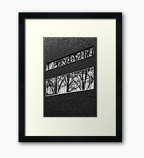 Reflectivi-tree Framed Print