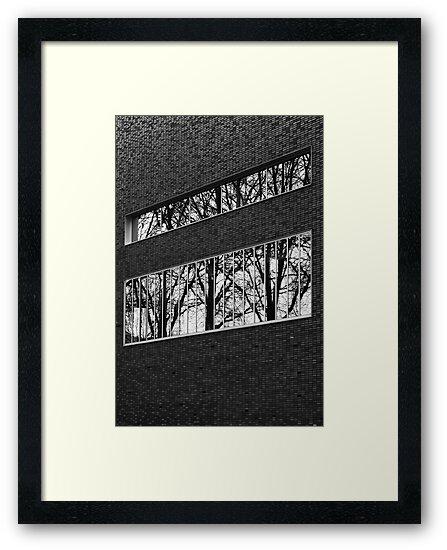Reflectivi-tree by PeterBusser