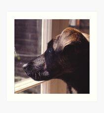 Kippa The Dog Art Print