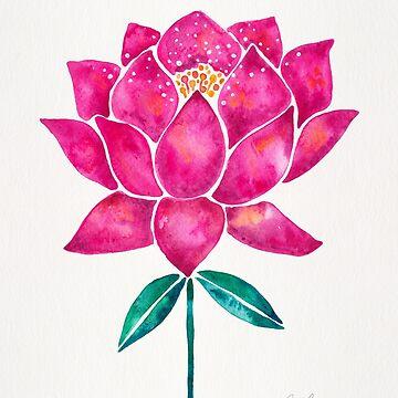 Heiliger Lotos - Magentarote Blüte von catcoq