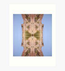 Outerwear, Organism, Plant, decoration, pattern, design, tree, nature, plant, vertical, no people, coniferous tree, non-urban scene Art Print