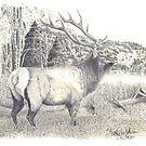 The Hunt by Scott  Nordstrom