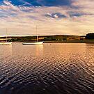 Boats on Derwent Reservoir  by David Lewins