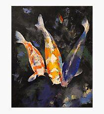 Three Koi Fish Photographic Print