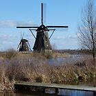 Windmill Kinderdijk (Holland) by angeljootje
