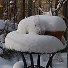 Snow Covered Table With Plant Pots by lezvee