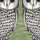 Patterned Owl with a Green background by Alicia Rogerson