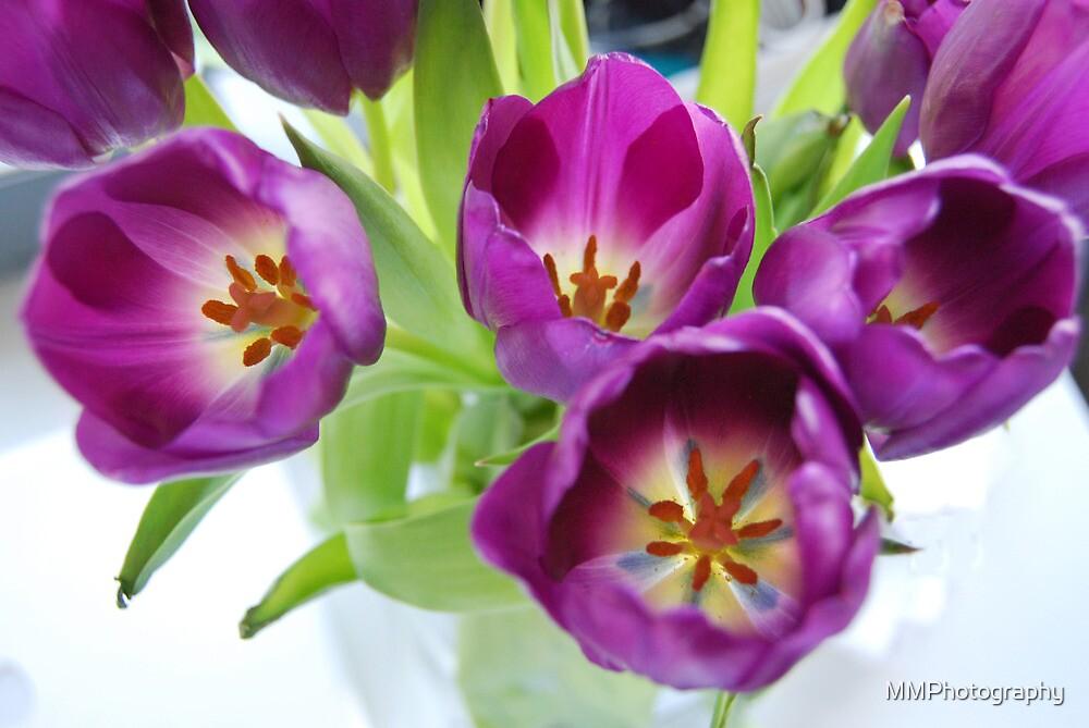 Rhapsody in Purple by MMPhotography