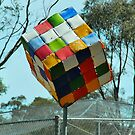 The Big Rubik's Cube by Penny Smith