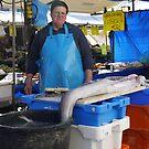 Food - eel by Marjolein Katsma