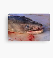 Food - up close and very personal Canvas Print