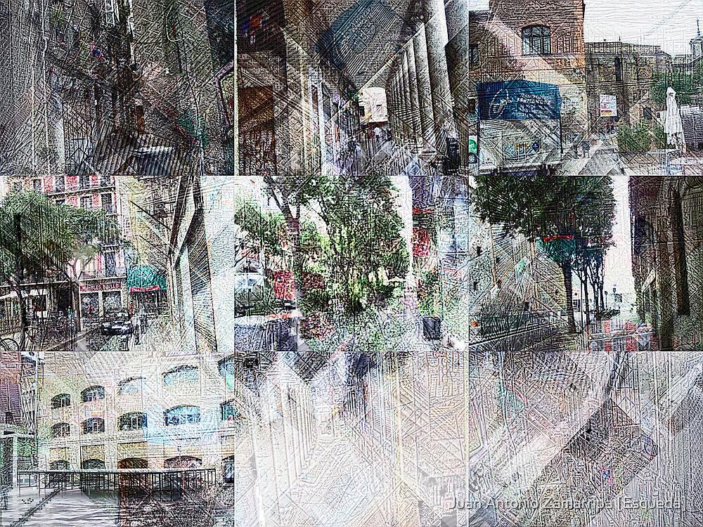 2009-07-16 [100_1813-100_1821 _GIMP] by Juan Antonio Zamarripa [Esqueda]
