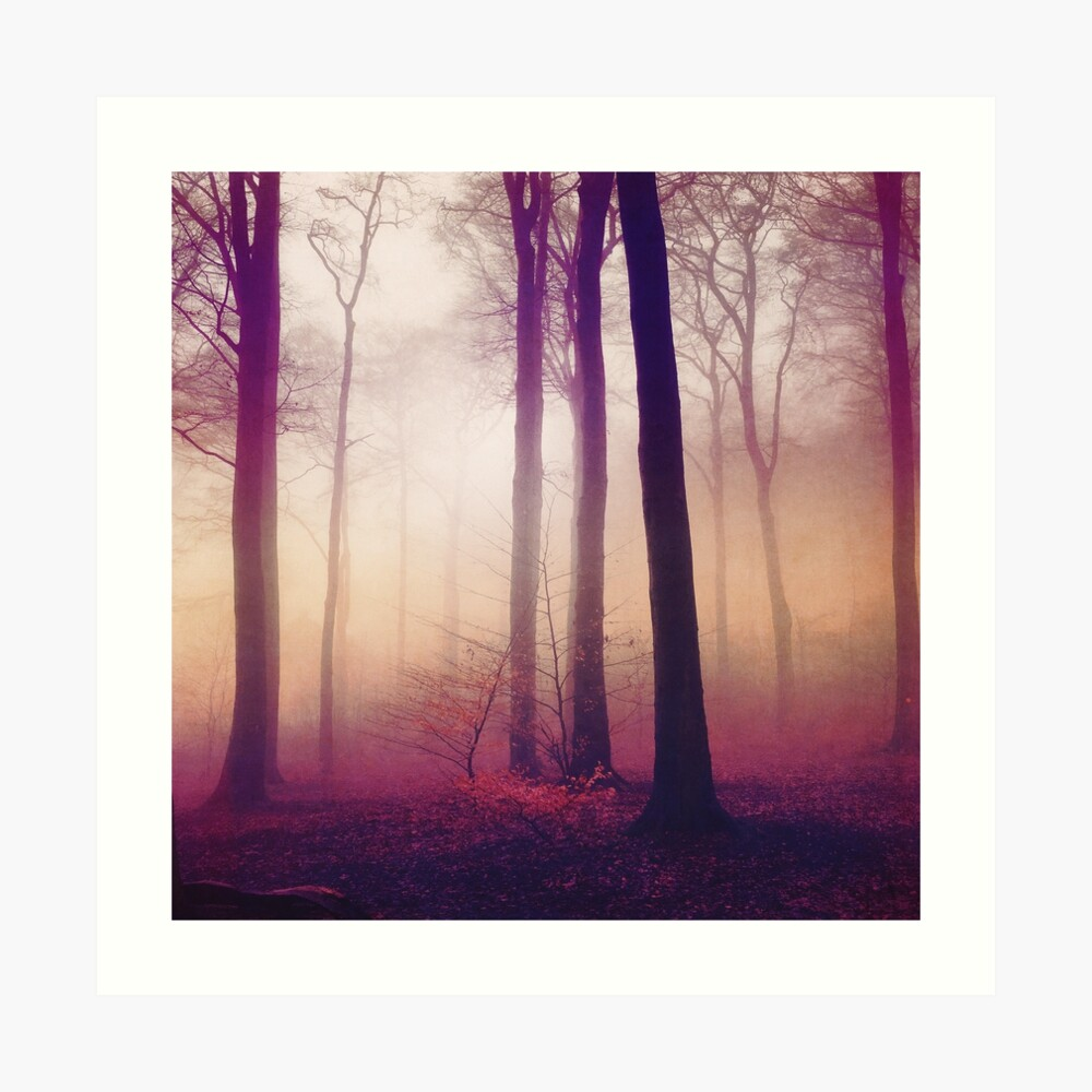 Mysts - Forest in Winter Fog Art Print