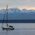 Sailing Before an Olympic Mountain Sunset by Wolf Read