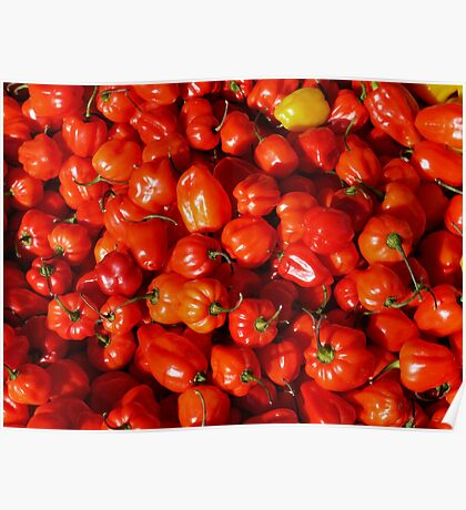 Food - small red peppers Poster