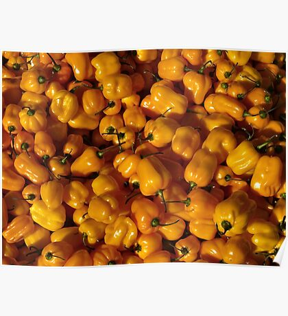 Food - small yellow peppers Poster