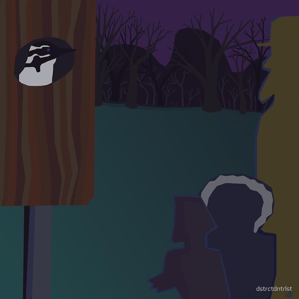 Hairy Woodpecker by dstrctdntrlst