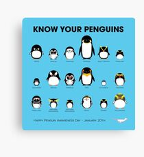 Know Your Penguins Canvas Print