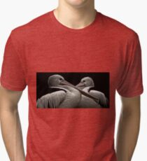 just a couple of pelicans Tri-blend T-Shirt