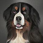 Bernese Mountain Dog. Drawing, illustration funny dog  by bonidog
