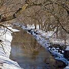 Crawfish River 2 by ECH52