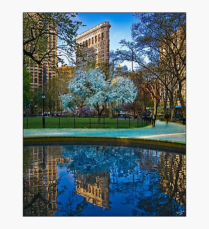 Spring Arrives In Madison Square Park Photographic Print