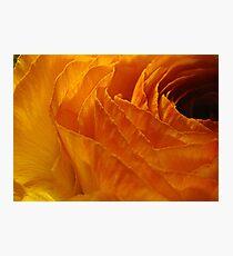 Embers Photographic Print