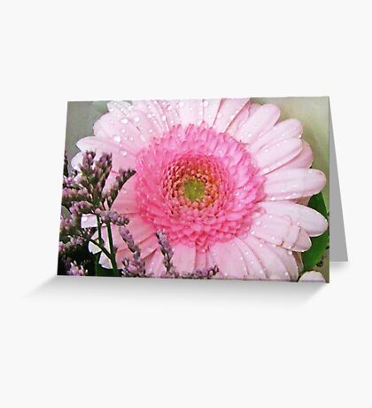 Pink Gerbera Greeting Card