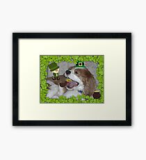 What's all this blarney about EVERYONE being Irish on St. Paddy's Day? Framed Print
