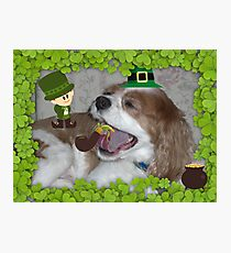 What's all this blarney about EVERYONE being Irish on St. Paddy's Day? Photographic Print