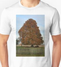 Chestnut Tree T-Shirt