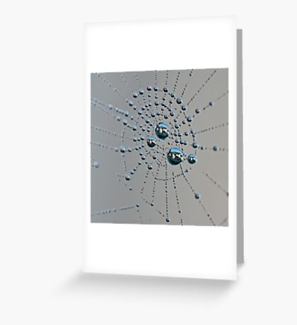 Living in the web Greeting Card