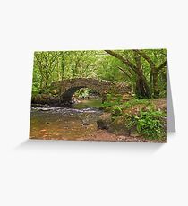 Hisley Packhorse Bridge Dartmoor Greeting Card