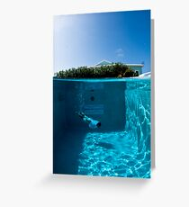 Diving the Hotel Pool Greeting Card