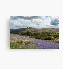 Holwell Bluebell Lawns Dartmoor Canvas Print