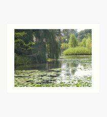 Pond at Detriot Zoo Art Print