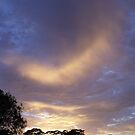 Pingelly February Dawn Sky by LouJay